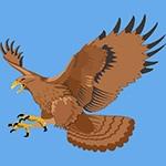 Раскраска орёл
