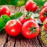 Раскраска помидор