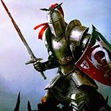 Раскраски рыцари