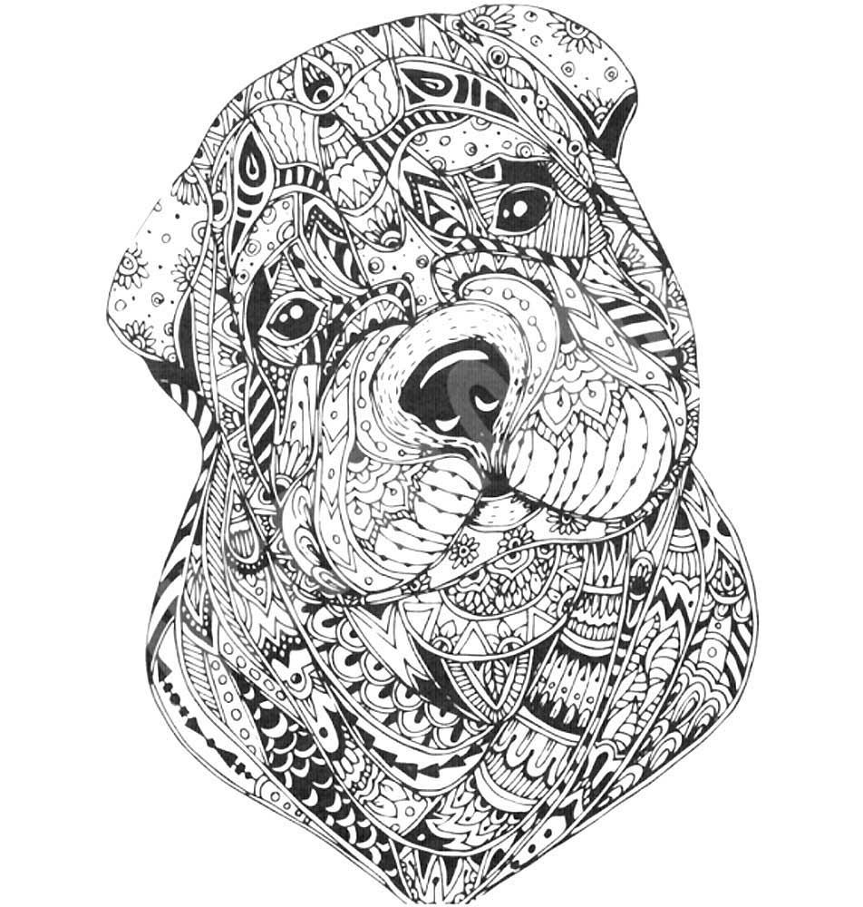 Раскраски животные антистресс скачать и распечатать