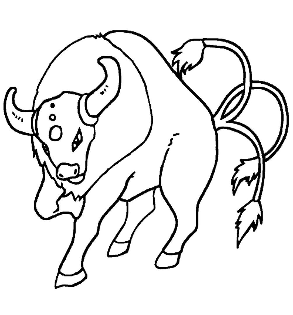 картинки раскрасок быков характеристика женщины-козерога сводится
