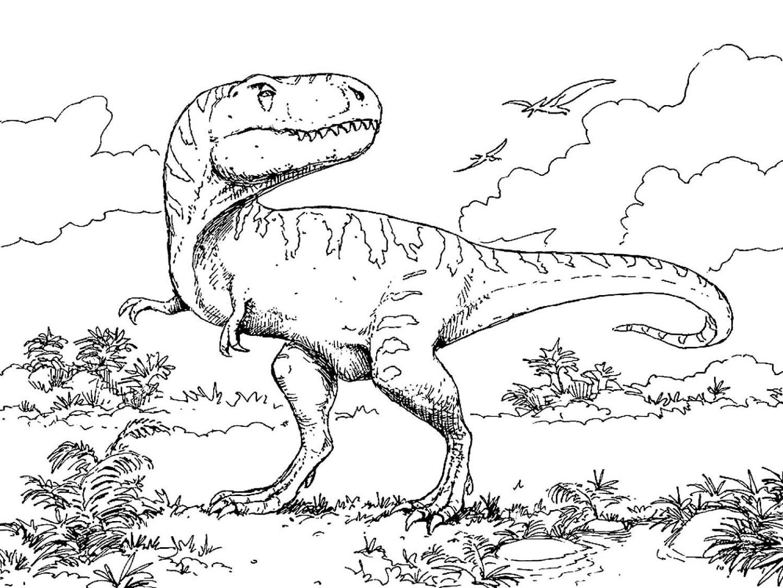 Раскраска распечатать динозавры