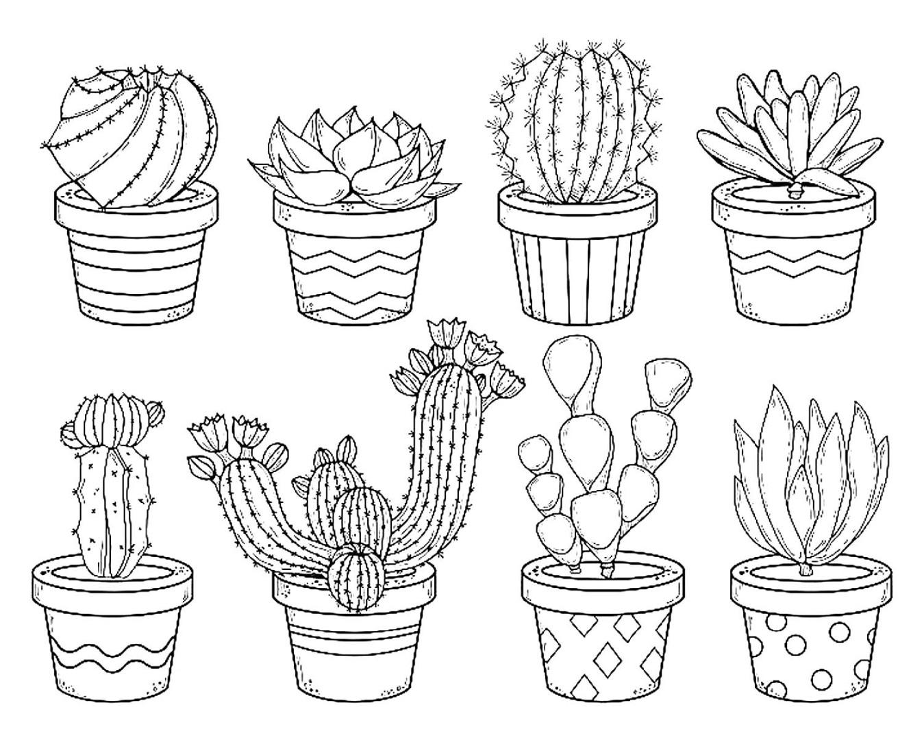 милые картинки кактусов черно белые выбыл