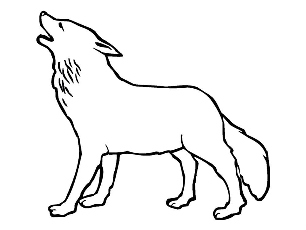 Раскраска волк скачать и распечатать