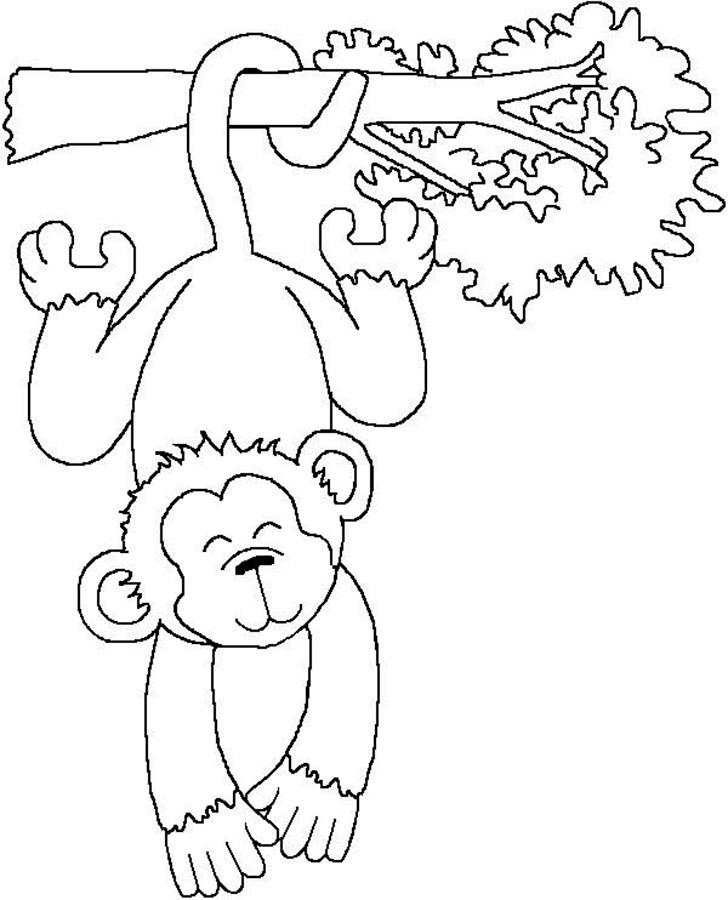 Раскраски для малышей обезьян