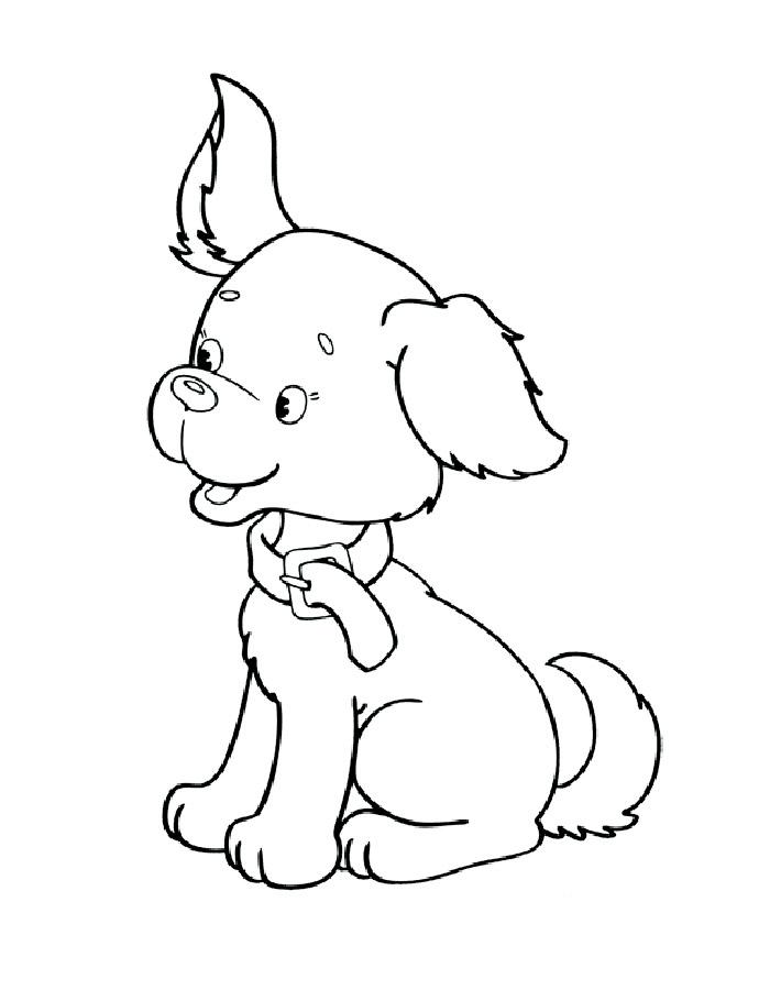 Фото раскрасок собак