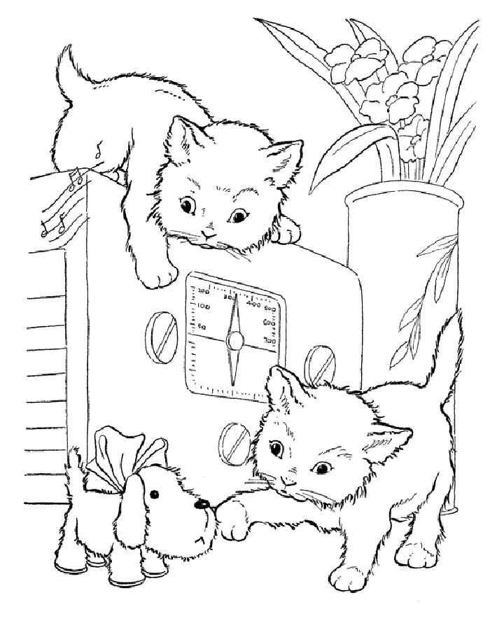 Распечатать раскраски про котят и кошек