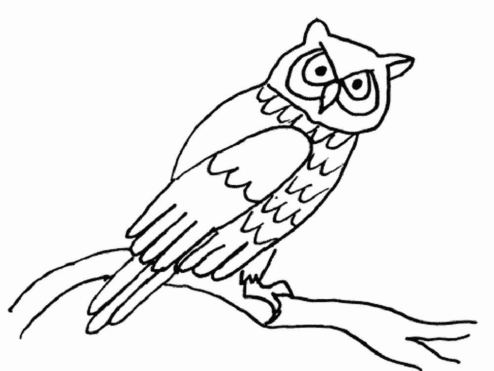Раскраски сова для детей - 1
