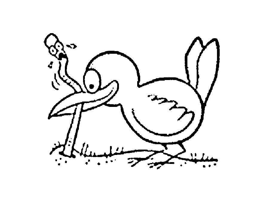 Птицы и животные раскраски детские: Раскраски птицы скачать и распечатать
