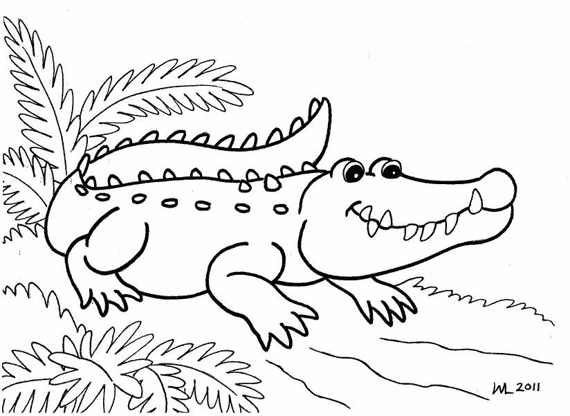 Раскраски с крокодильчиками