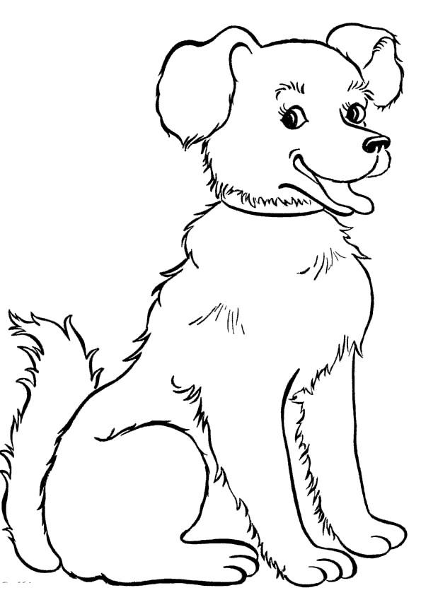Раскраска собака скачать и распечатать