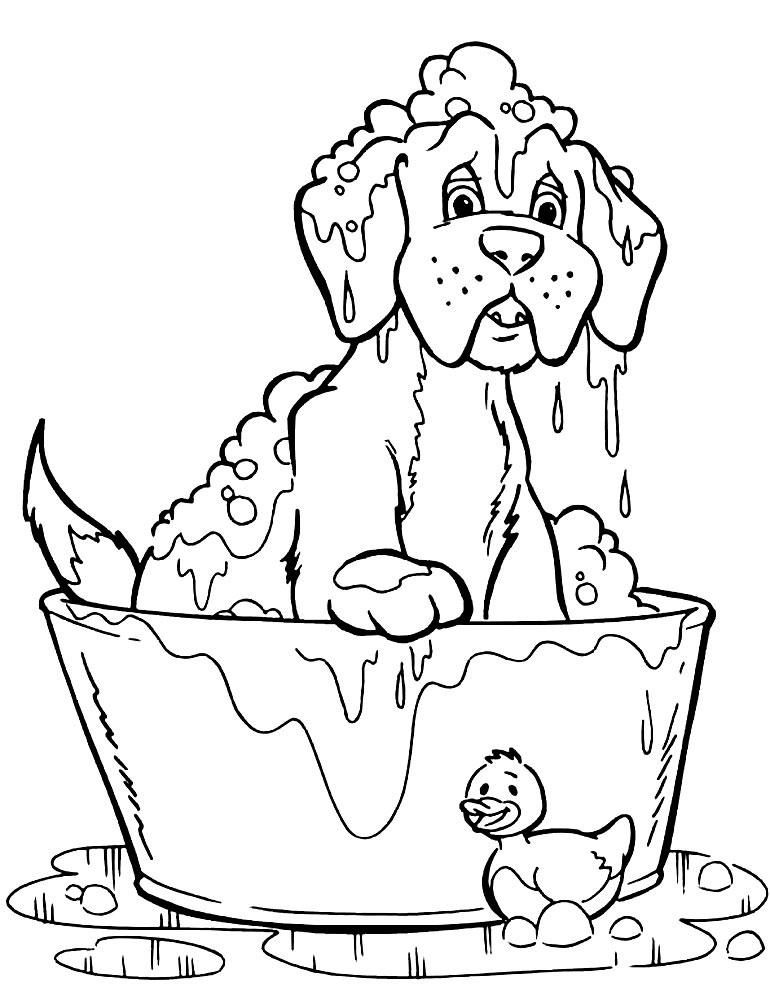 детские рисунки из сказок сивка-бурка