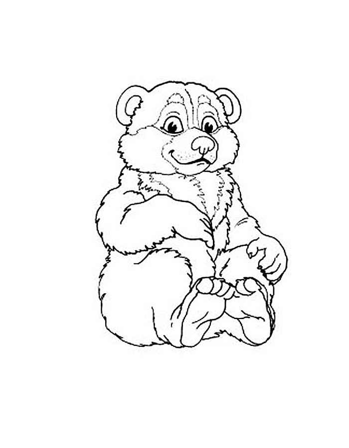 раскраска белый медведь скачать и распечатать