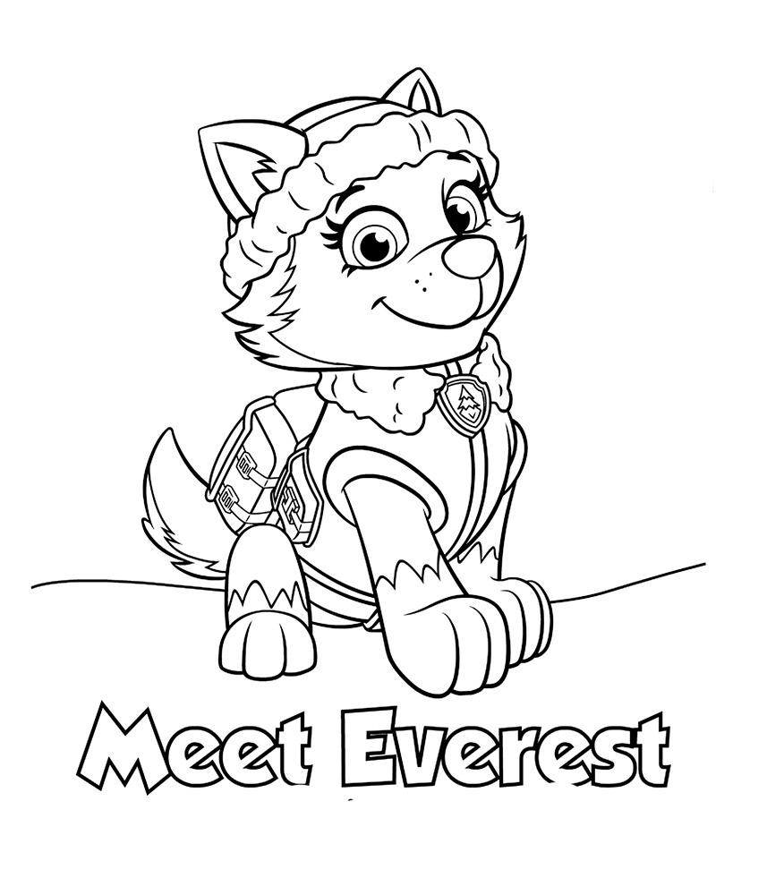 Эверест щенячий патруль раскраска