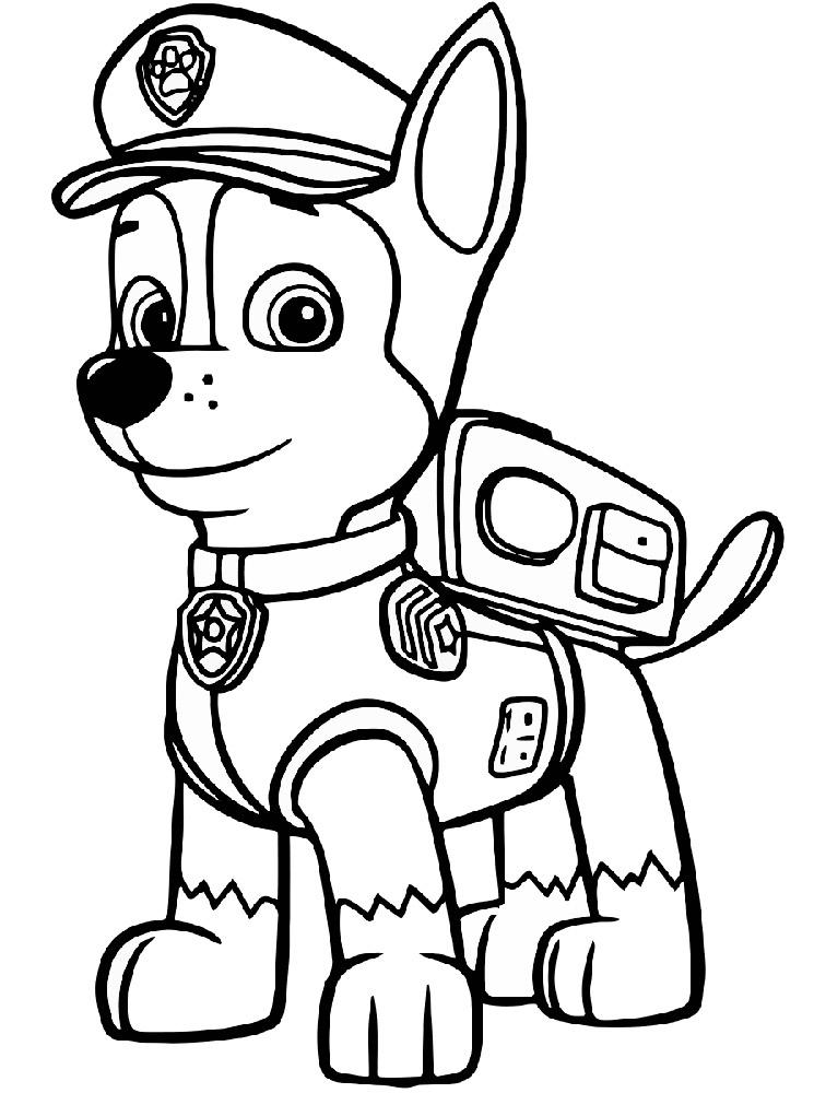 Зума из щенячьего патруля раскраска
