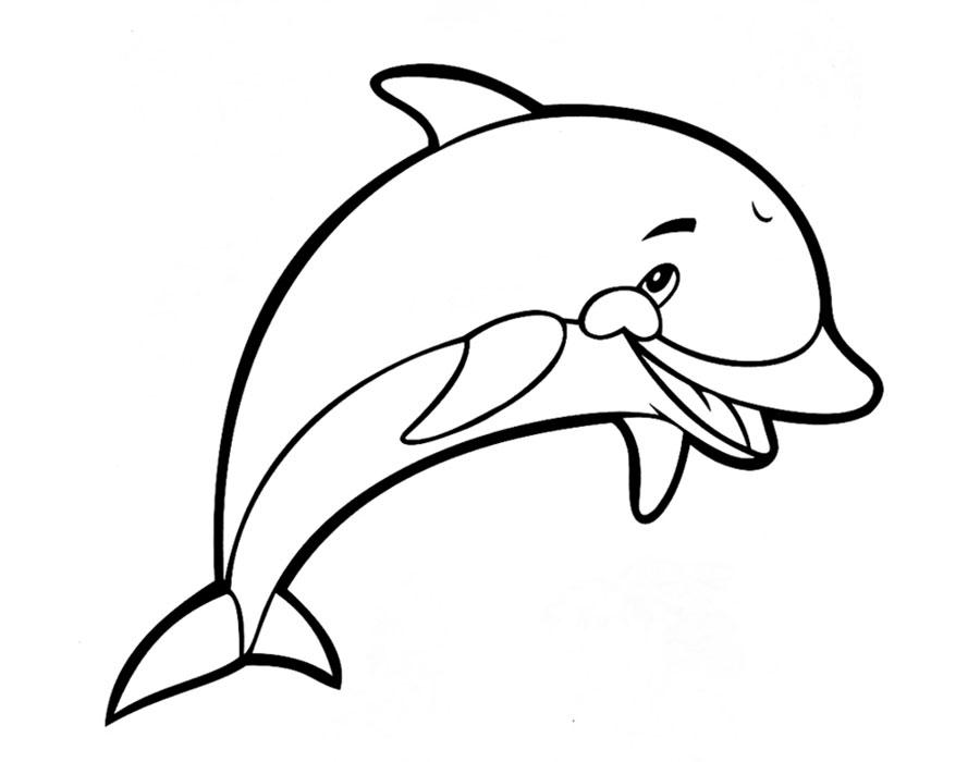Раскраска дельфин скачать и распечатать