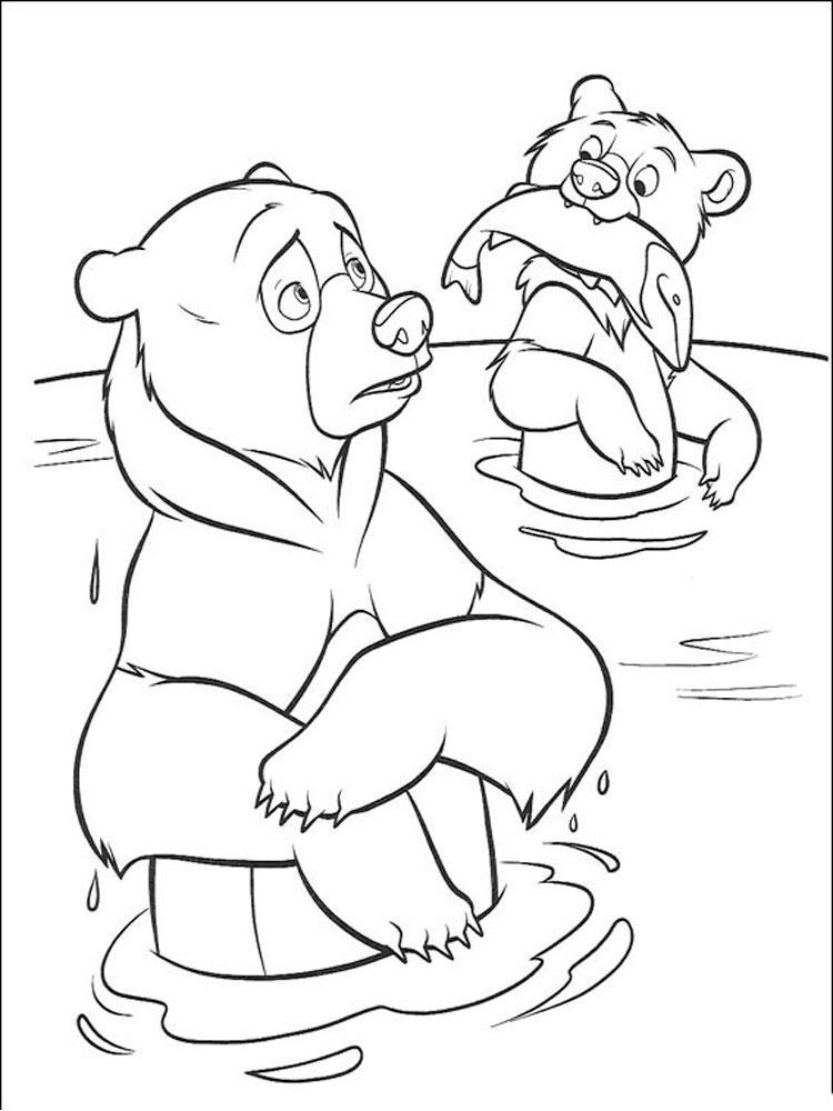 Раскраска медведь скачать и распечатать