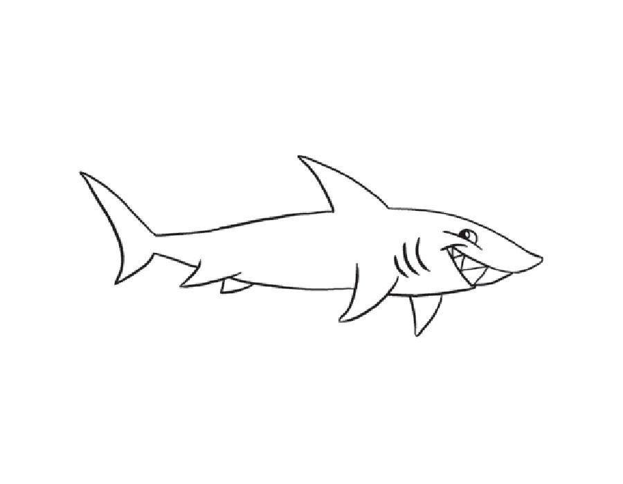 Раскраска акула скачать и распечатать
