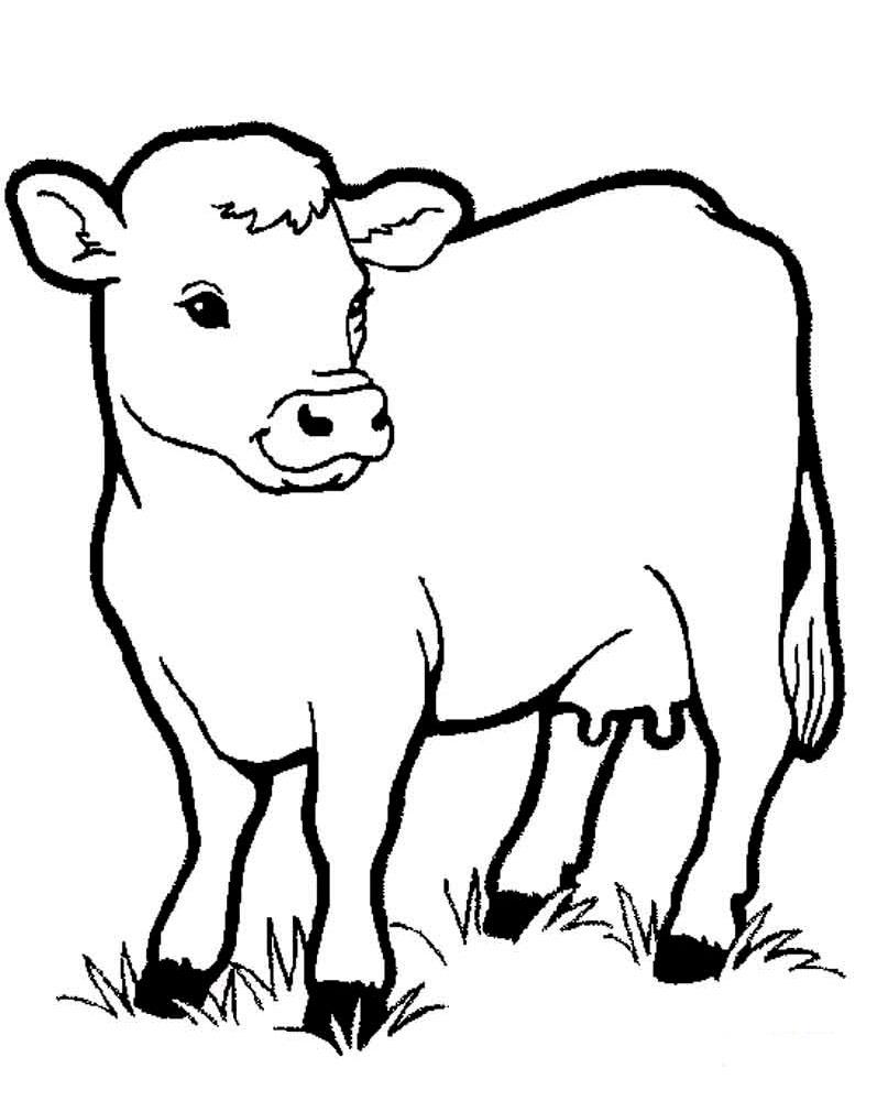 Раскраска для малышей домашние животные - 3