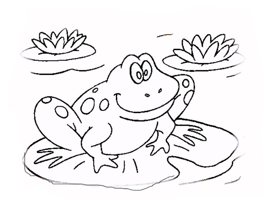 Раскраски лягушка - 3