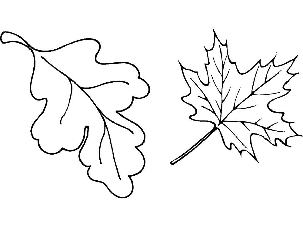 Раскраска осенние листья скачать и распечатать