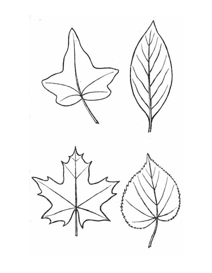 листика простейший рисунок
