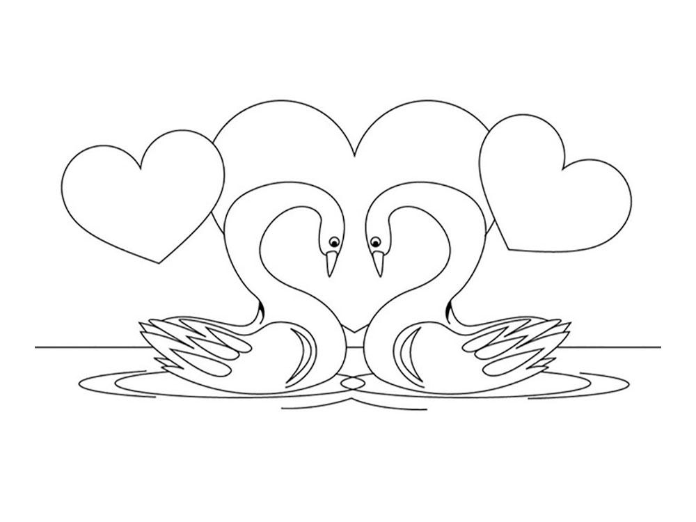 Две лебеди раскраски