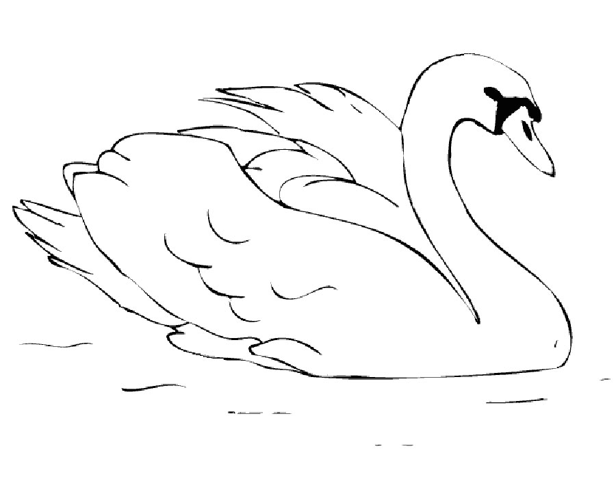 Раскраски лебеди для детей