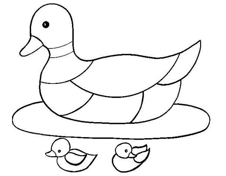 Раскраска утка скачать и распечатать