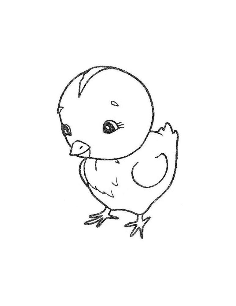 очень веселый цыпленок рисунок карандашом добивали