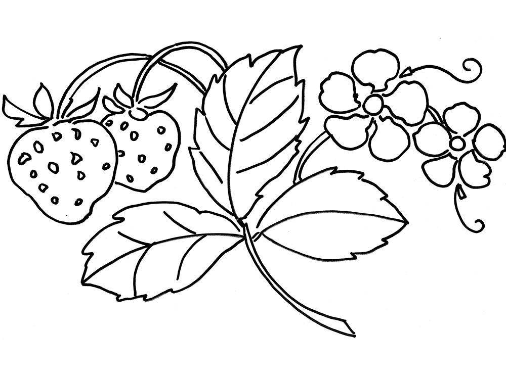 Раскраска клубника