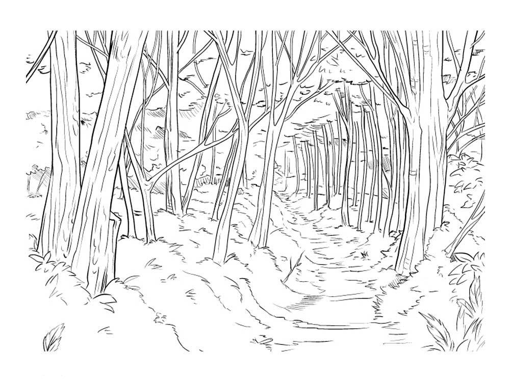 Рисунки леса для срисовки