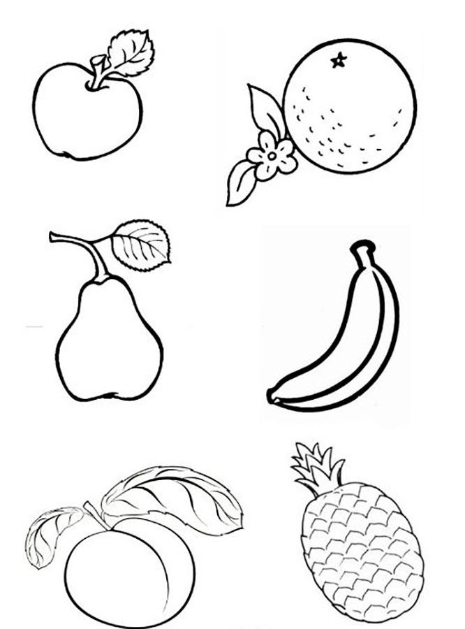 Фрукты и овощи черно-белые картинки