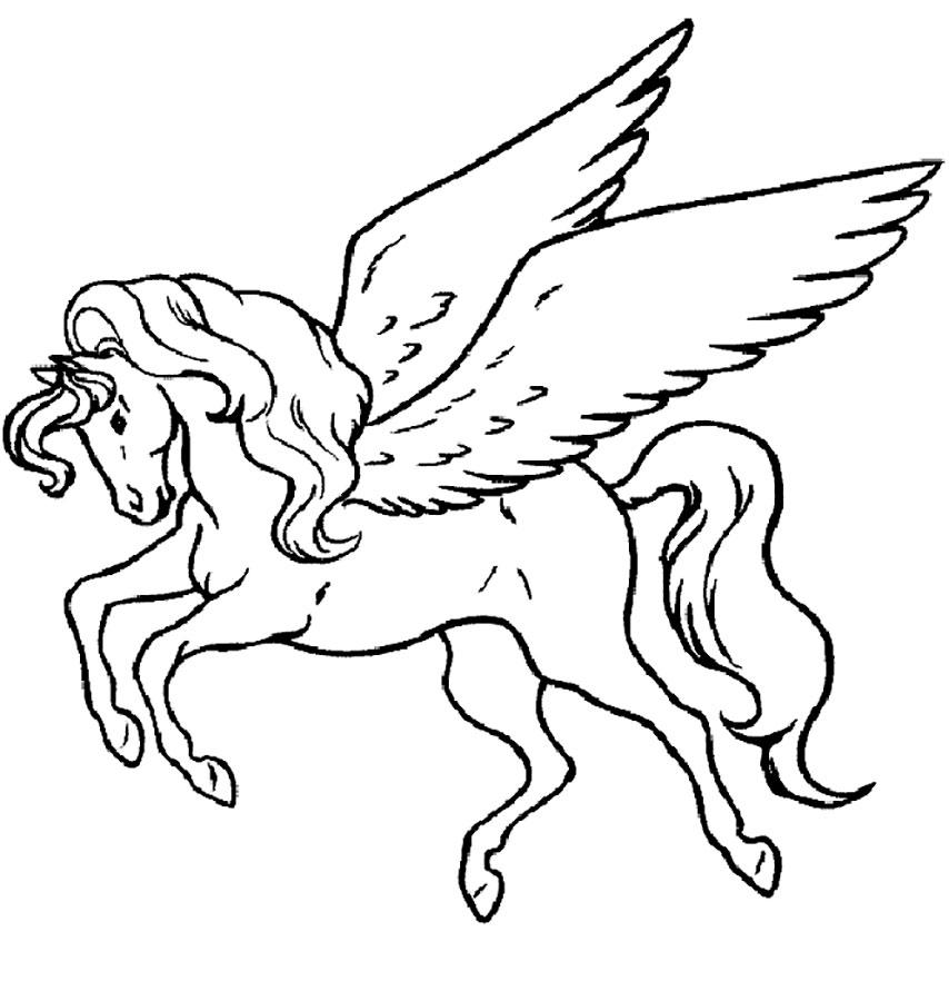 благодаря картинка пегаса с крыльями раскраска всех видов французской