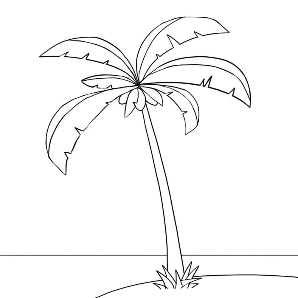 картинки пальмы для рисования