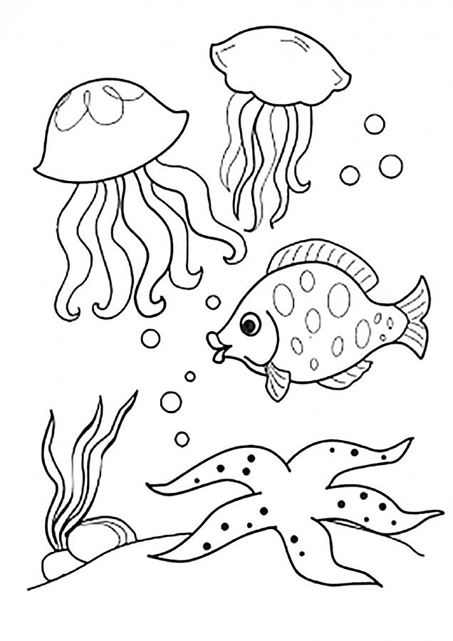 Раскраска морские обитатели скачать и распечатать