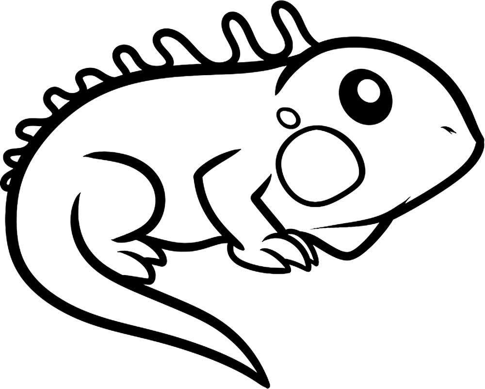 раскраска ящерица скачать и распечатать