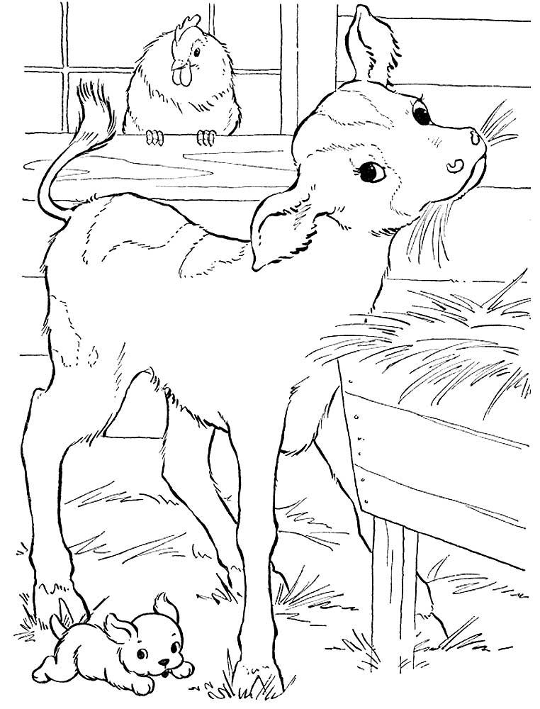 курорта раскраска животные на ферме распечатать бешеную популярность, практически