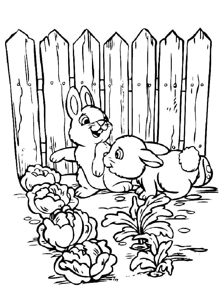 картинка сад и огород распечатать распоряжении гостей сад