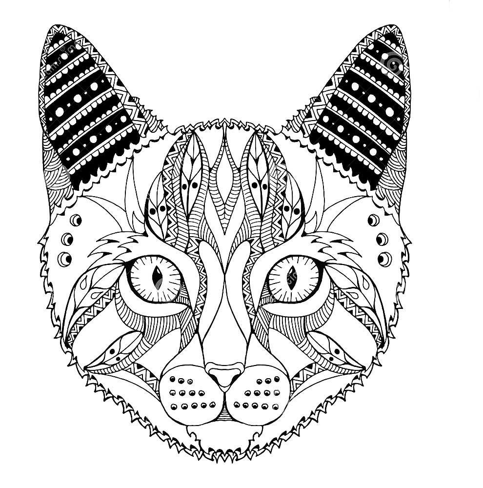 День, распечатать картинки кошек мордашки антистресс