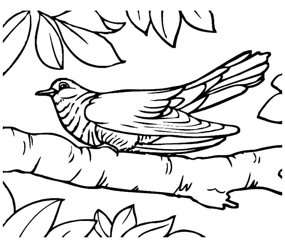 картинки как нарисовать кукушку продажа оптом