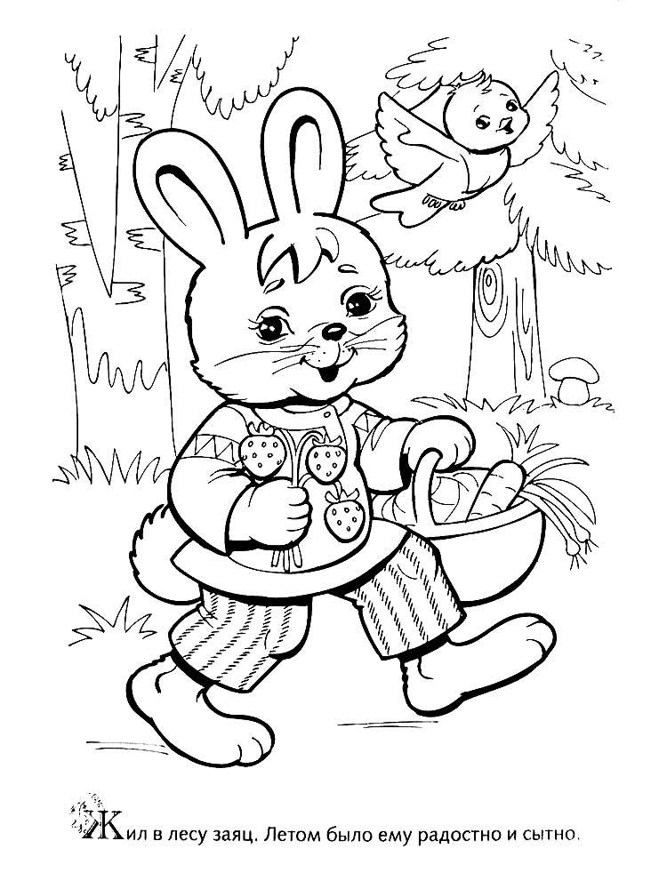 Лиса и заяц картинки карандашом