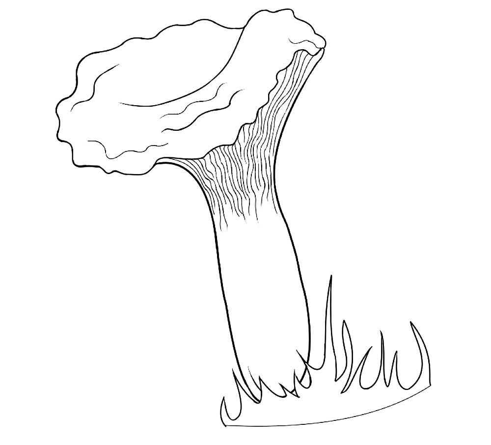 картинки нарисовать гриб лисичку для праздников