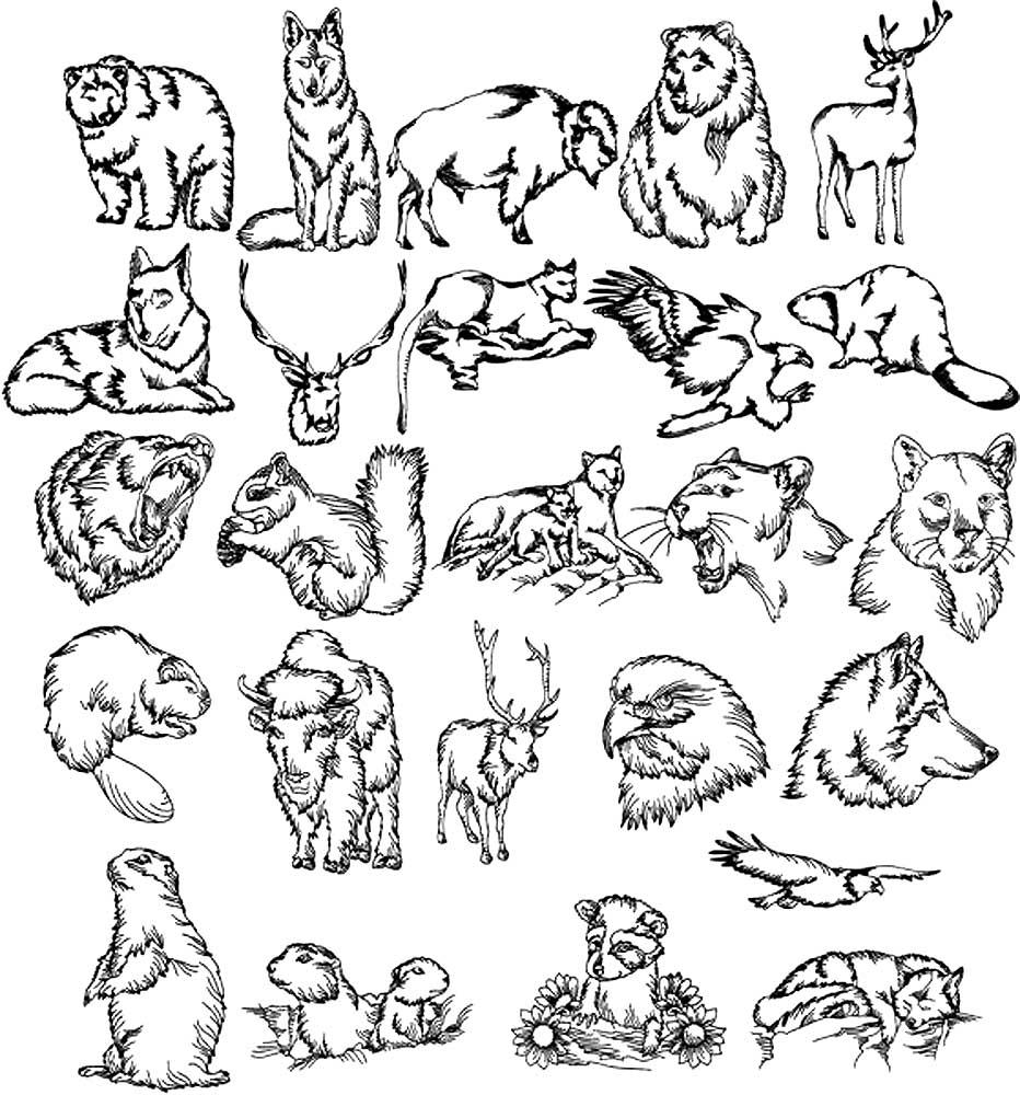 маленькие картинки для распечатки черно белые животные предметы быта будет