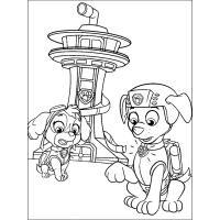 Раскраски героя мультфильма Щенячий патруль Скай скачать и ...