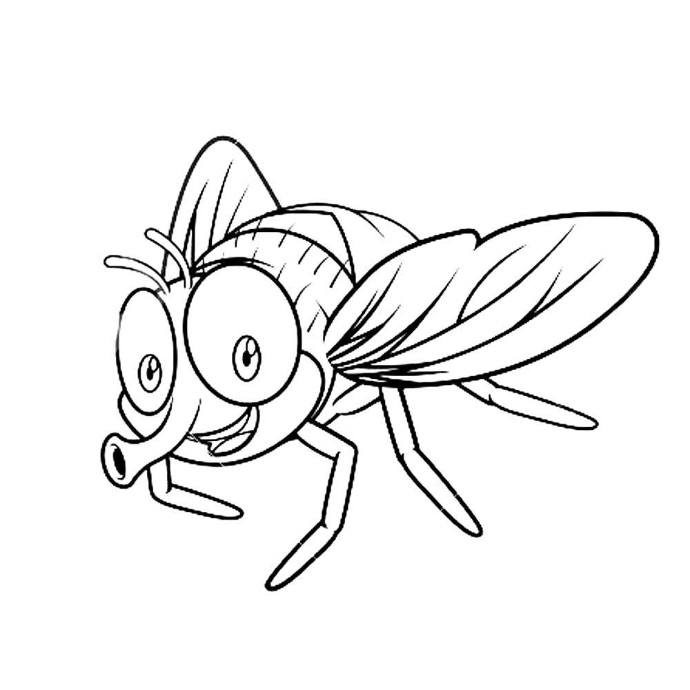 рисунок с мухами лежит основе, исследователи