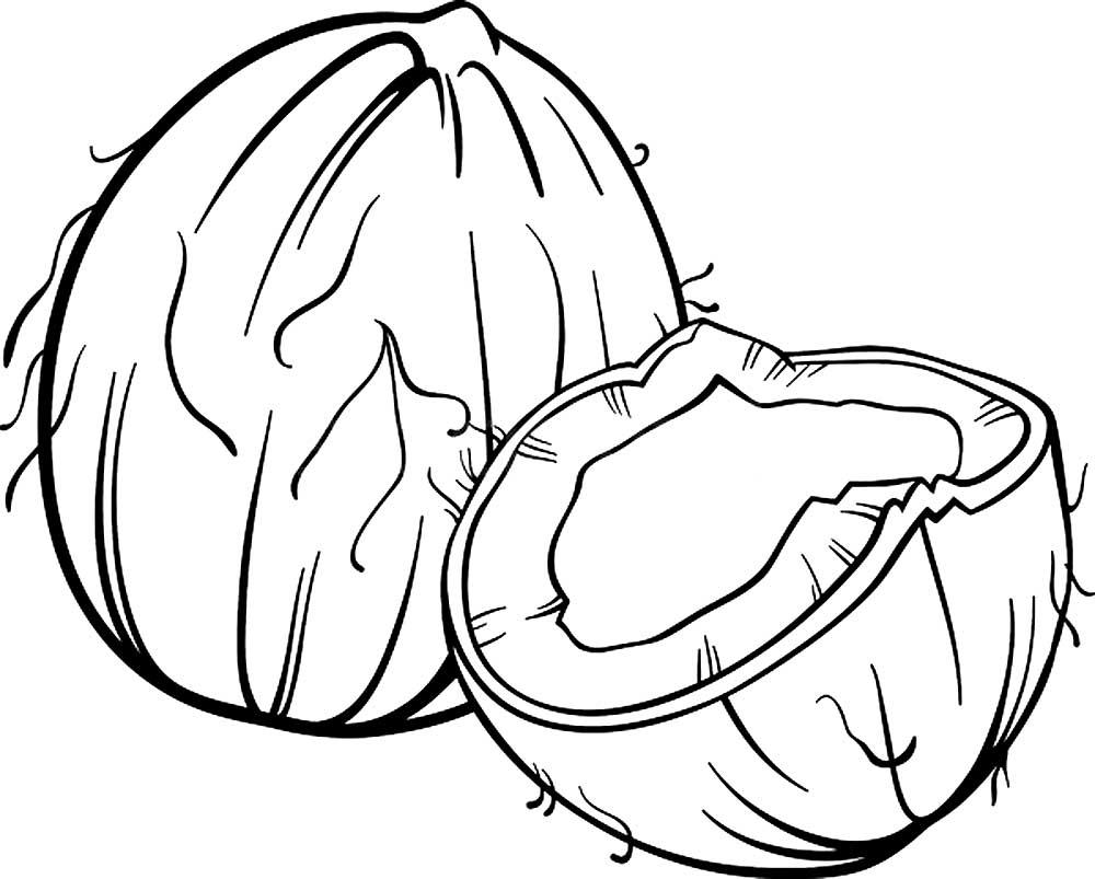 раскраска орехи скачать и распечатать