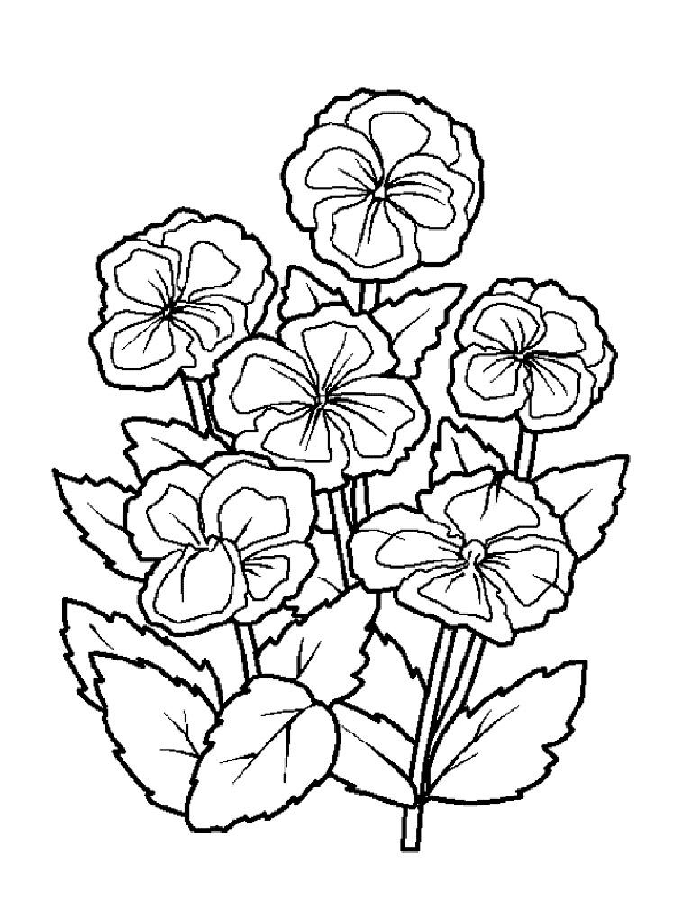 Раскраски букетов цветов для детей