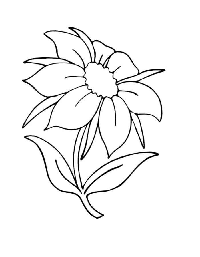 Раскраски для девочек цветик семицветик распечатать