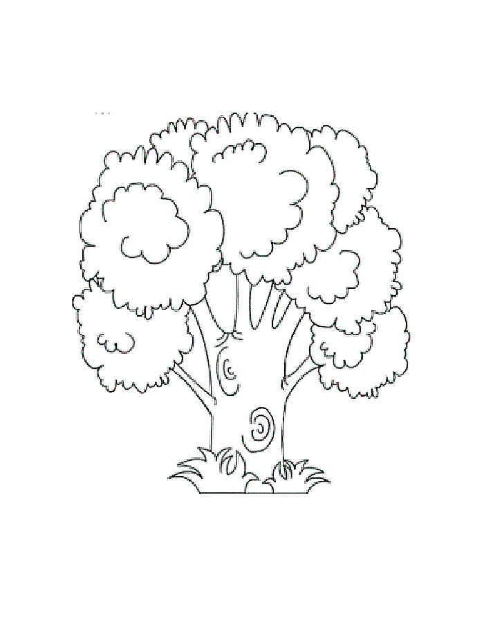 Раскраска дерево скачать и распечатать